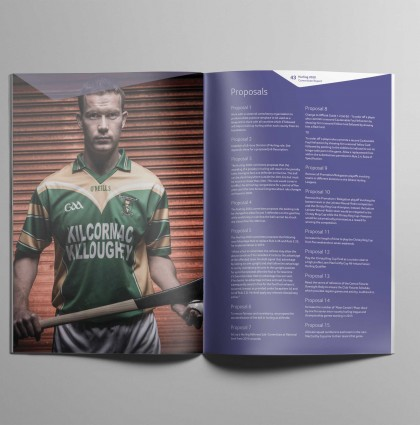GAA Hurling 2020 Report
